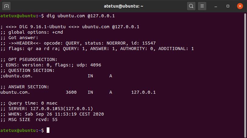 dig ubuntu domain