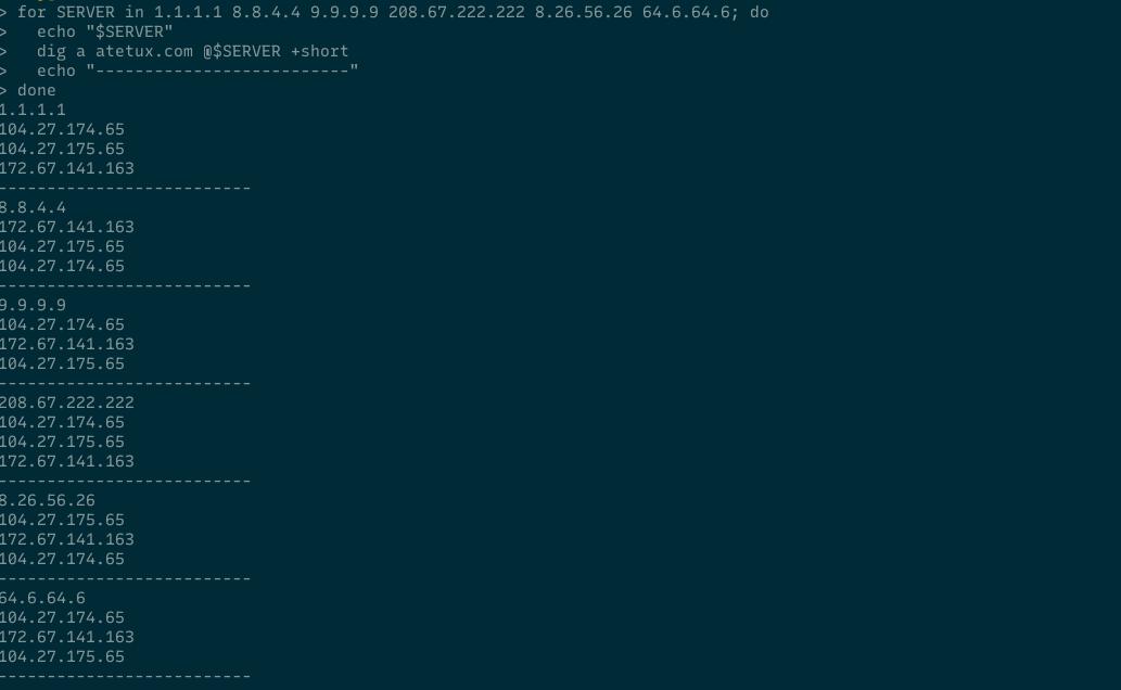 dns script output