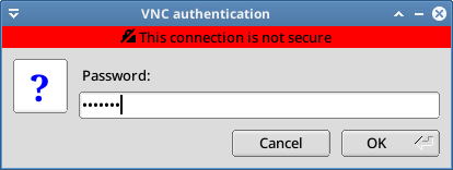 enter the vnc password