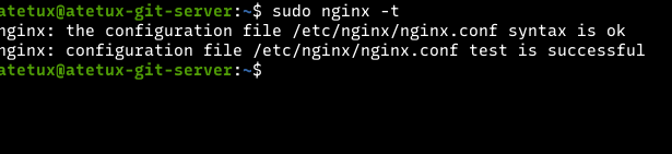 nginx test okay